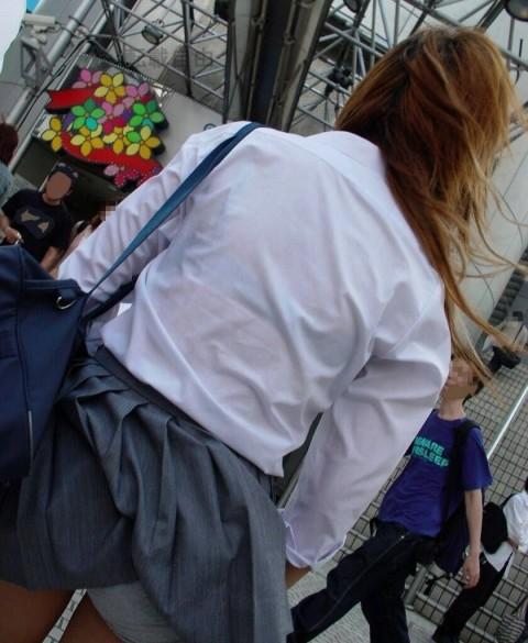 透けブラしてるJKたちの街撮りエロ画像 ero54
