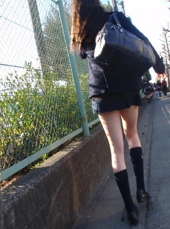 肉がパンパンに詰まった女子校生の太もも街撮り素人エロ画像 2424