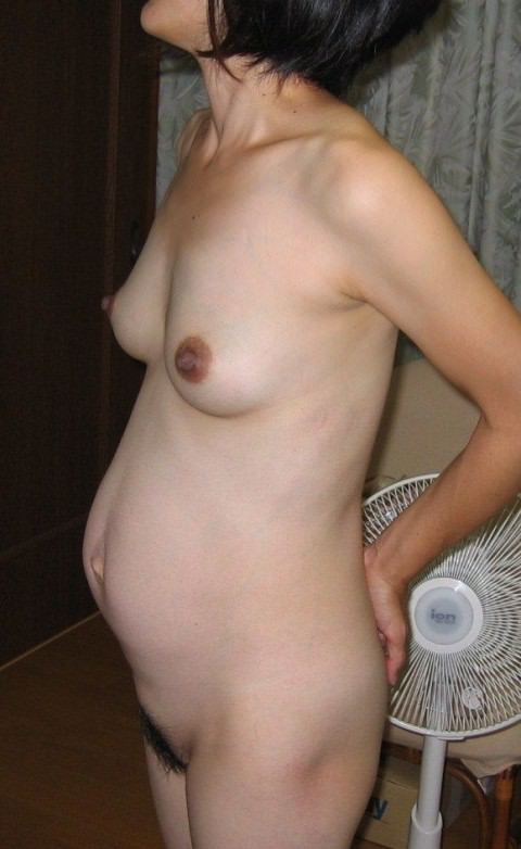 お腹がぷっくり大っきくなってる妊婦ママさん達のエロ画像 371