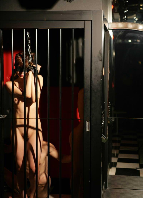 ゲージに入れて飼い慣らされた拘束人妻たちのSMエロ画像 15114