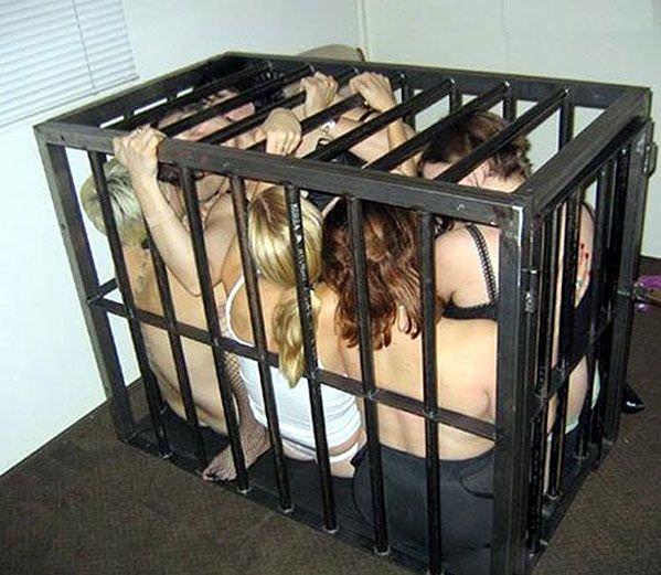 ゲージに入れて飼い慣らされた拘束人妻たちのSMエロ画像 20101