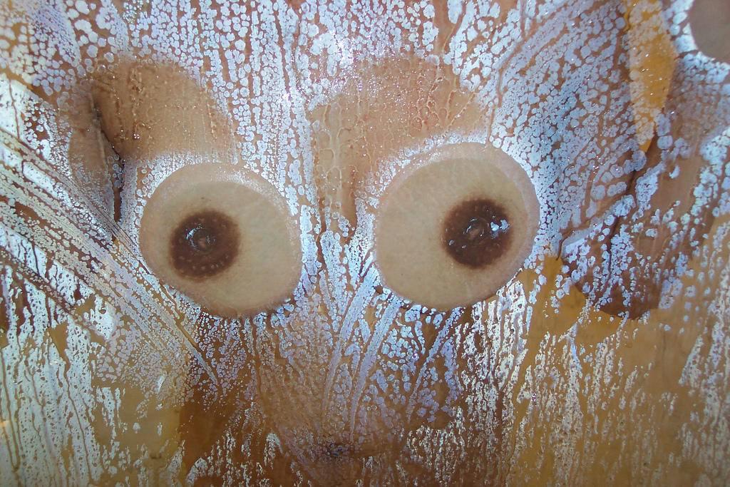 ガラスにおっぱい押し付けて乳首が梅干しみたいになってるエロ画像 2189