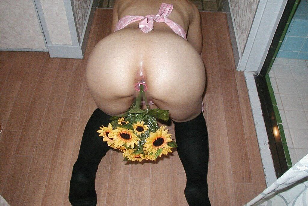 彼女のアナルやまんこに花ぶっ挿して生花にしてるヤバいエロ画像 3136