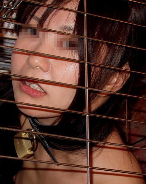 ゲージに入れて飼い慣らされた拘束人妻たちのSMエロ画像 3157