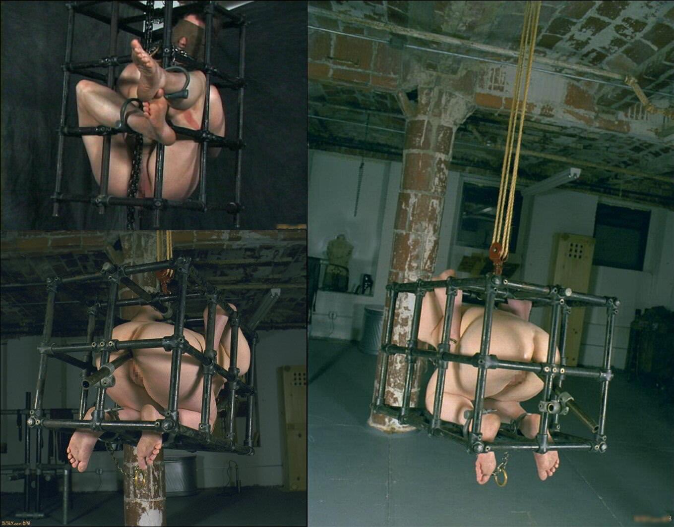 ゲージに入れて飼い慣らされた拘束人妻たちのSMエロ画像 7114