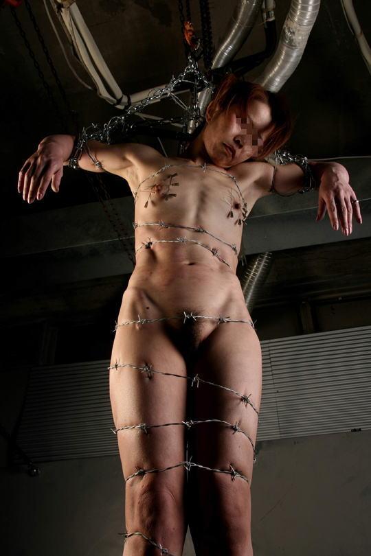 有刺鉄線を体に巻かれてズタズタになってるドM女のヤバイSMエロ画像 173