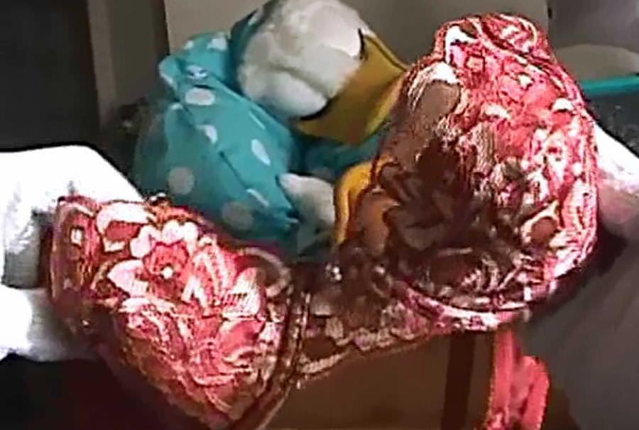 一人暮らしのOL宅に侵入してパンティーやブラを盗み撮りした下着エロ画像 1447