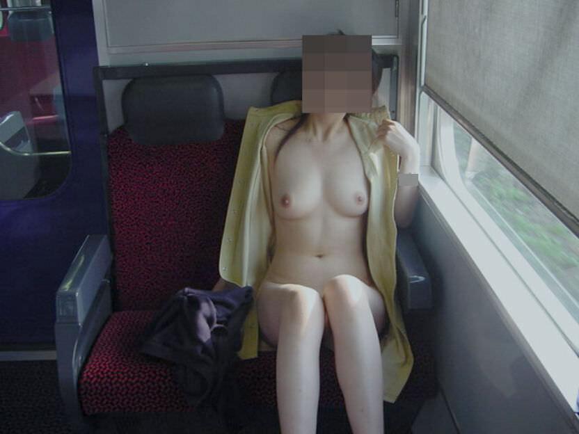 単純な露出では満足出来ずガチ電車内で全裸になってるド変態女のエロ画像 10107