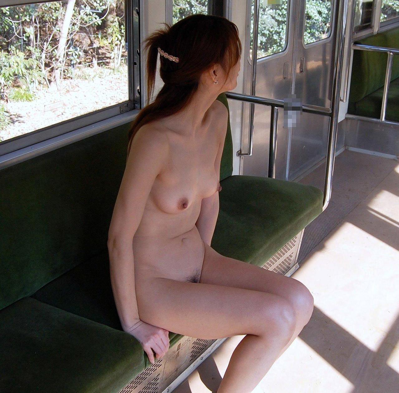 単純な露出では満足出来ずガチ電車内で全裸になってるド変態女のエロ画像 11146