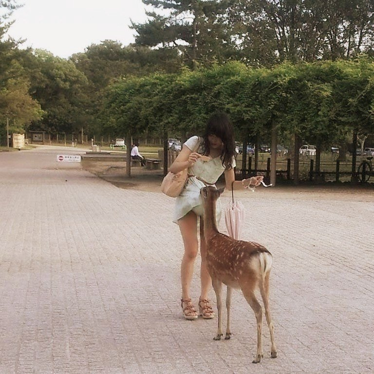 エロと動物が共存してるとってもシュールなおもしろエロ画像 3113