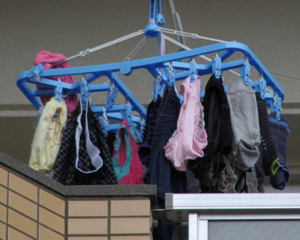 クロッチに染み付いた匂いが洗濯物から匂いそうなガチ盗撮下着エロ画像 3123