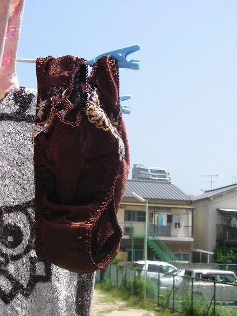 クロッチに染み付いた匂いが洗濯物から匂いそうなガチ盗撮下着エロ画像 824