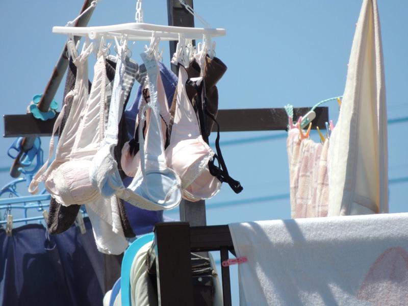エッチな団地妻が洗濯済みの下着をベランダに大量に干してるぞぉーwwwwwwwww 0VjYIF6