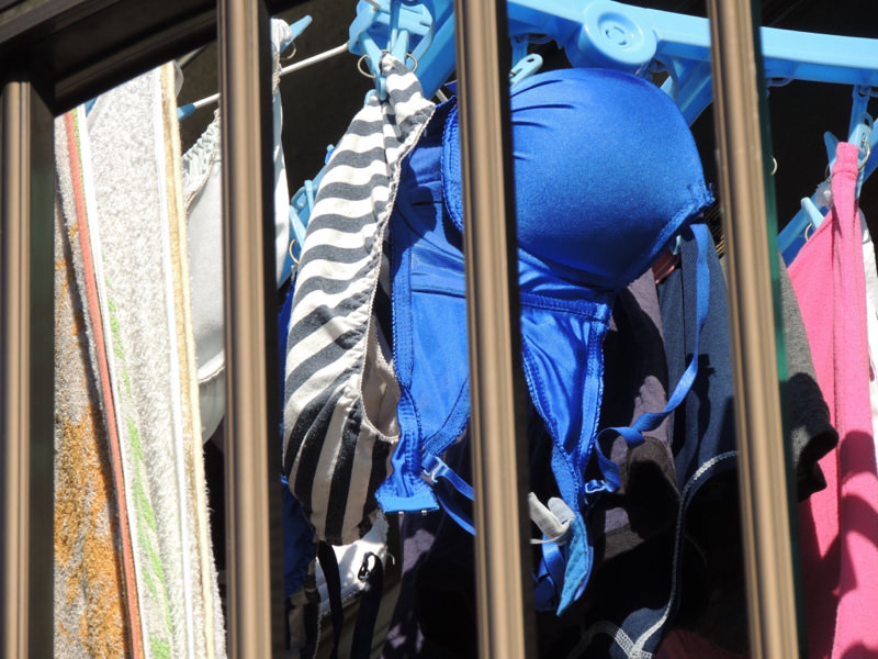 エッチな団地妻が洗濯済みの下着をベランダに大量に干してるぞぉーwwwwwwwww ZcpjPyd