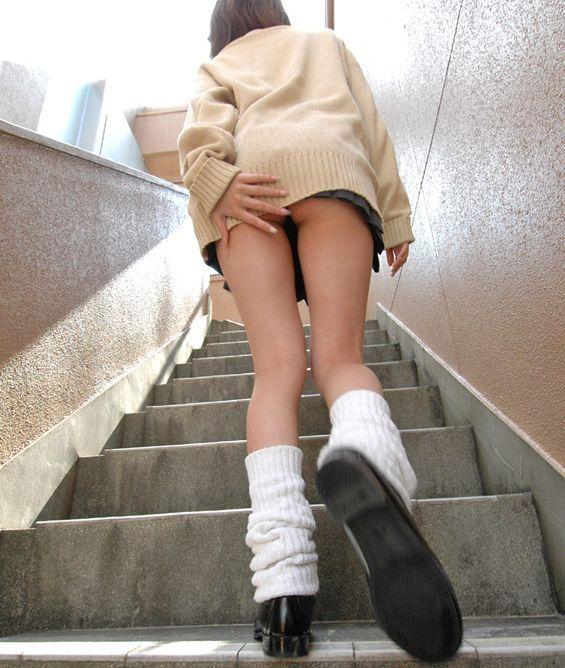 黒パンストのJS小学生が夏服はエロ可愛い画像
